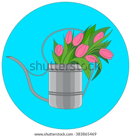 Vector illustration of a garden watering can. Watering can filled with pink flowers tulips