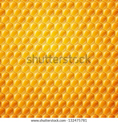 Vector Illustration of a Natural Background with Honeycombs - stock vector