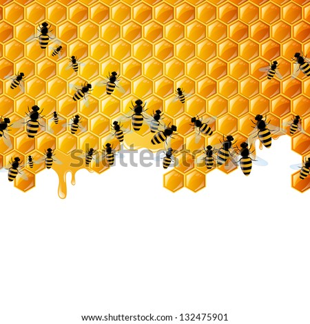 Vector Illustration of a Natural Background with Honeycombs and the Bees - stock vector