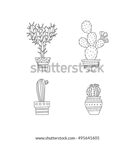 Stock Vector Chamomile Camomile Herb Flower Floral Vintage Background in addition Magis Proust Chair as well  on modern white garden vase html