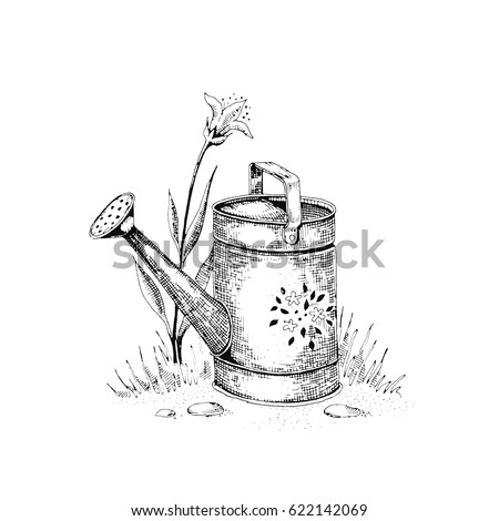 Vector illustration of a sketch on the theme of gardening. Plant watering. Black and white free-hand sketch. Isolated on white background