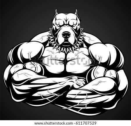 Pitbull stock images royalty free images vectors - Cartoon body builder ...
