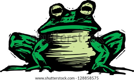 Vector illustration of a toad