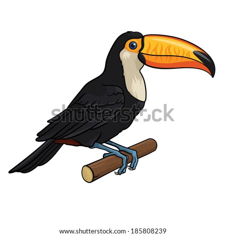 Vector illustration of a Toucan, isolated on a white background - stock vector