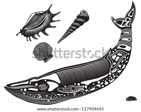 Vector illustration of a tribal totem tattoo animal - whale - and sea/ocean shells and rock - stock vector