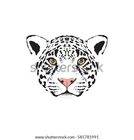 black panther stock images  royalty