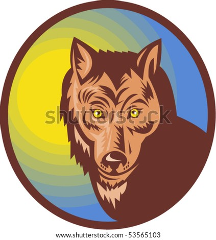 vector illustration of a Wolf or wild dog looking at the viewer - stock vector