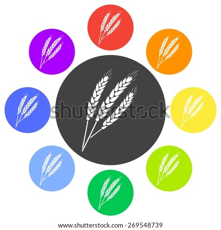 Vector illustration of agricultural modern silhouette ears of wheat icon (wheat). Black icon on white background. Circle. - stock vector