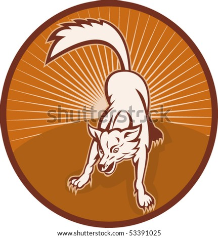 vector illustration of an angry wild dog or wolf barking about to attack with sunburst in the background - stock vector