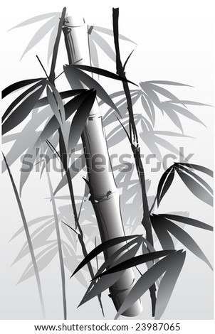 vector illustration of an oriental style painting of bamboo - stock vector