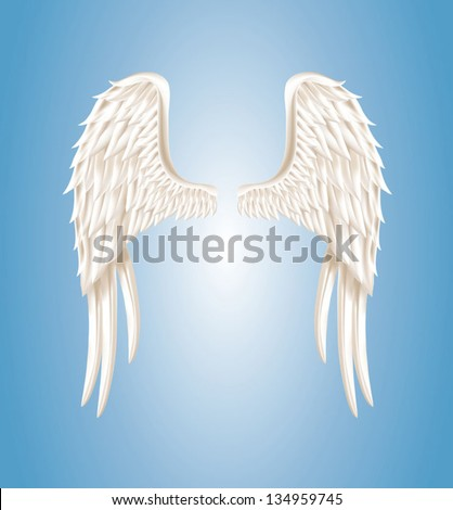 Vector illustration of angel wings on light blue background - stock vector