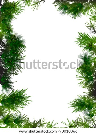 vector illustration of  background with spruce - stock vector