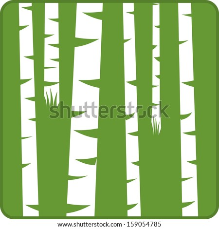 Vector illustration of birch trees in a forest - stock vector