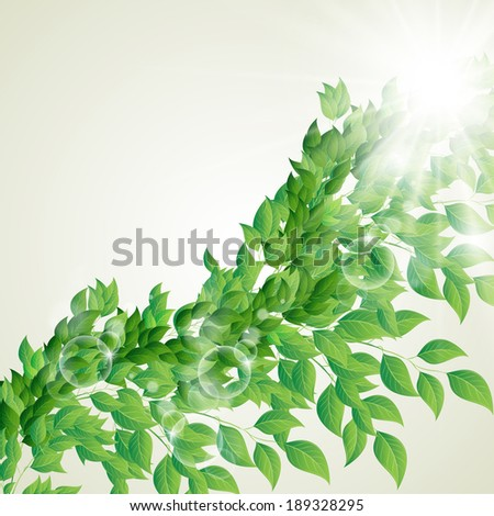 Vector illustration of branch with fresh green leaves - stock vector