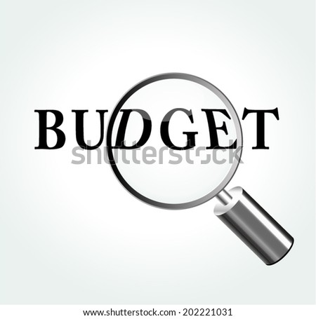 Vector illustration of budget concept with magnifying