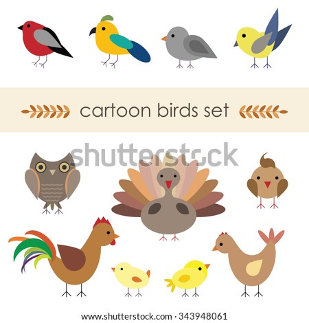 Vector illustration of cartoon cute birds  chicken family, turkey, pigeon, parrot isolated on white background