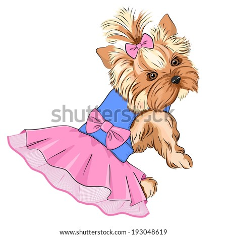Vector Illustration of cartoon cute fashion dog ( purebred Yorkshire Terrier/ pocket dog) in fluffy dress with lace skirt and big pink bow in her back and little bow in her hair - stock vector