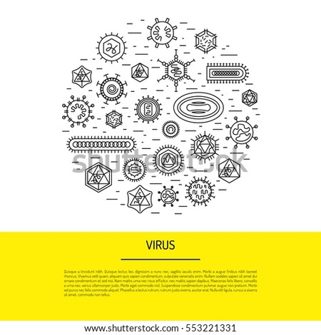 vectors and pathogens In epidemiology, a vector is an organism that does not cause disease itself but  which transmits infection by conveying pathogens from one host to another.