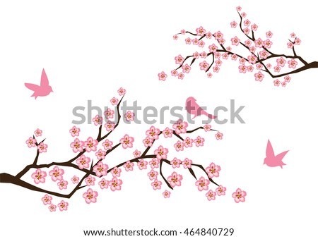 vector illustration of cherry blossom background with birds