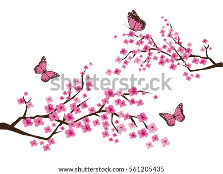 vector illustration of cherry blossom branch