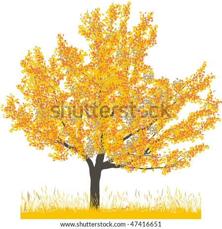 Vector illustration of cherry tree in autumn - stock vector