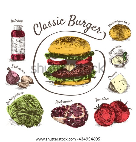 Vector illustration of classic burger ingredients. Hand drawn colorful illustration on white background - stock vector
