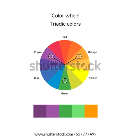 Vector Illustration Of Color Circle Infographics Palette Triadic