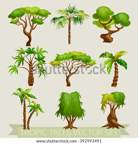 Vector illustration of colored tropic trees icon set isolated. - stock vector