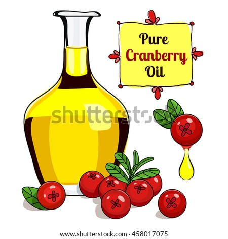 vector illustration of Cranberry oil for food and cosmetic label and banner. Bottle of berry oil for cosmetic and medicine . Cranberry oil isolated on the white. Medicinal berry oil. stock vector