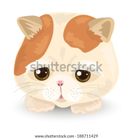 Vector Illustration of Cute Cat Face : Tabby cat on the white background - stock vector