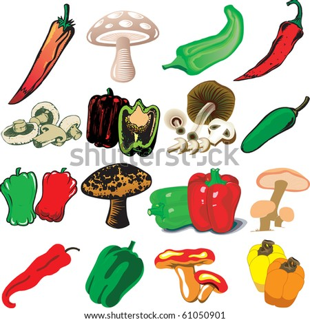 Vector Illustration of 16 different Mushrooms and Peppers - stock vector