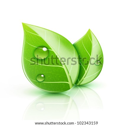 Vector illustration of ecology concept icon with glossy green leaves - stock vector
