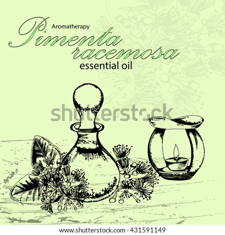 vector illustration of essential oil of pimenta racemosa in the style of hand drawn