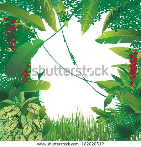 vector illustration of exotic tropical forest, blank spot on the middle - stock vector