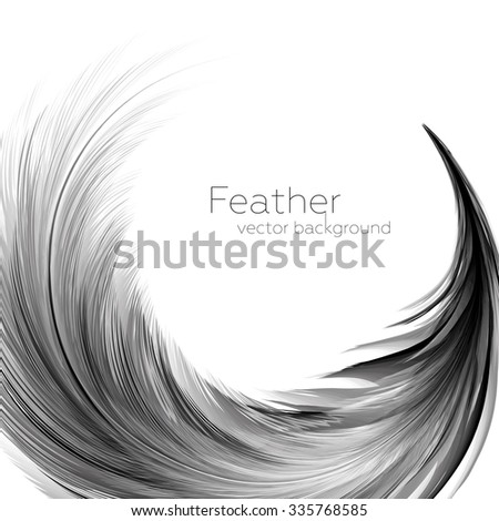 Vector Illustration of Feather | EPS10 Card Design - stock vector