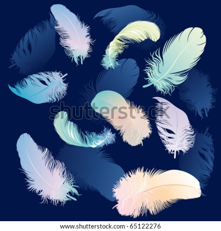 vector illustration of feathers - stock vector