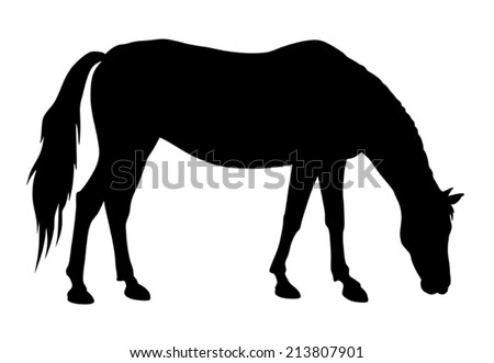 vector illustration of feeding horse silhouette - stock vector