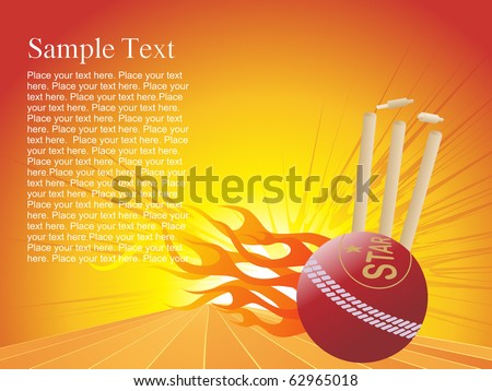 vector  illustration of fire cricket background - stock vector