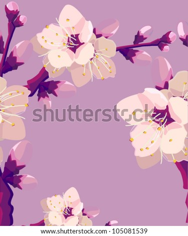 vector illustration of  floral frame - stock vector