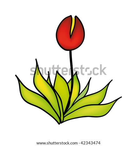 vector illustration of flower isolated on white background