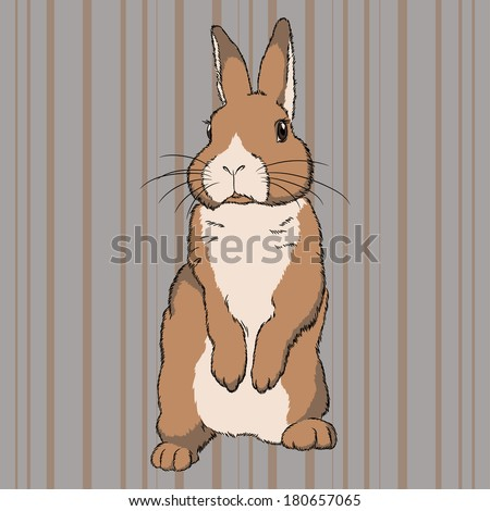 Vector illustration of fluffy brown beige standing rabbit on striped background - stock vector