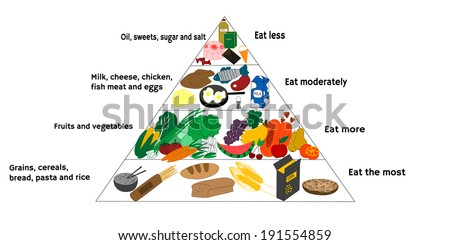 Vector illustration of food diagram and healthy diet - stock vector