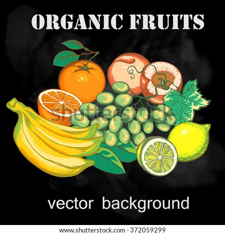 Vector illustration of fruit. Objects isolated on chalkboard background. Design elements for processing fruit shops, restaurants menu, agricultural fairs. - stock vector
