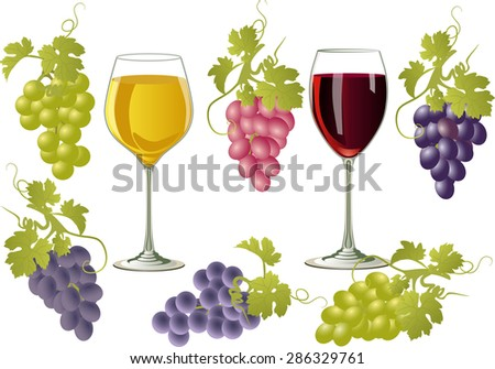 Vector illustration of glasses of wine and bunches of grapes. Two glasses with white and red wine on a white background and a bunch of grapes of different varieties. - stock vector