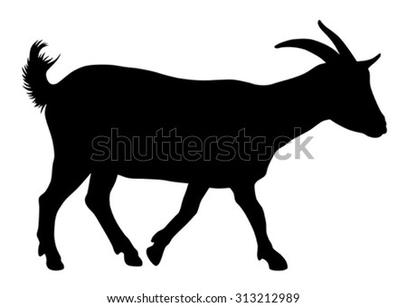 Vector illustration of goat silhouette - stock vector
