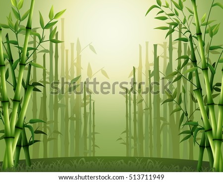 Vector illustration of Green bamboo trees background inside the forest
