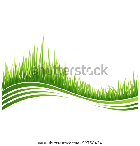 Vector illustration of green grass wave background. - stock vector