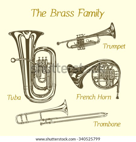 Vector illustration of hand drawn brass family instruments. Beautiful ink drawings of tuba, trumpet, trombone and french horn.  - stock vector