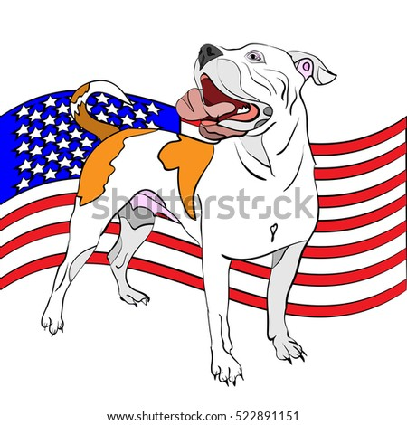 vector illustration of hand-drawn, outlined american bulldog in front of waving american flag