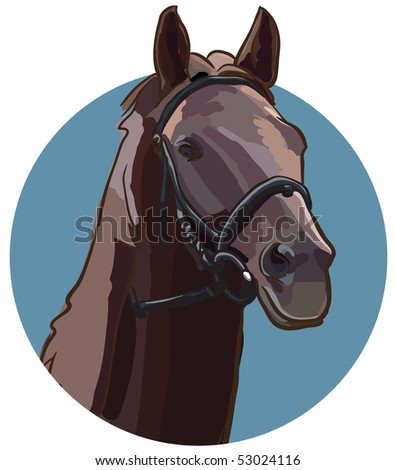 Vector illustration of horse head in sketch style.